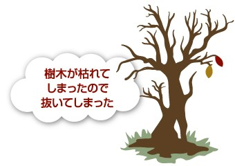 養生によって樹木が枯れてしまうケース