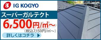 IGスーパーガルテクト7150円/㎡~