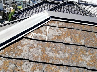 苔等で変色したスレート屋根