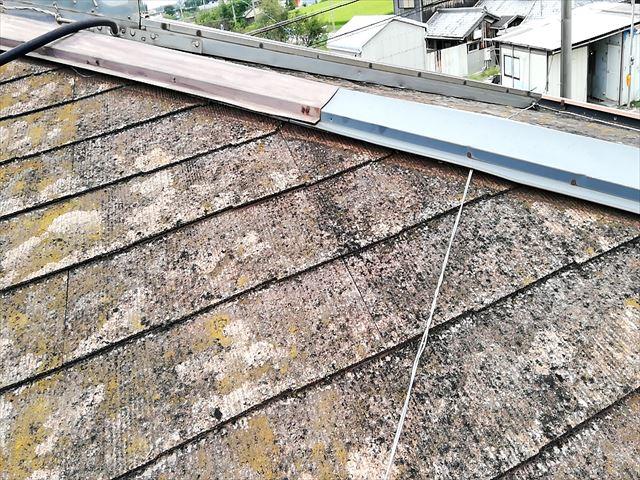 台風によって浮いた棟板金と苔の生えたスレート