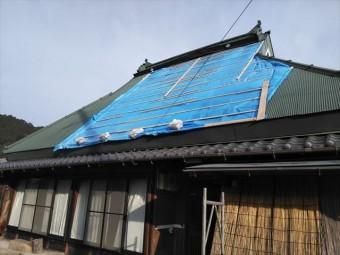 神河町の茅葺き屋根の養生