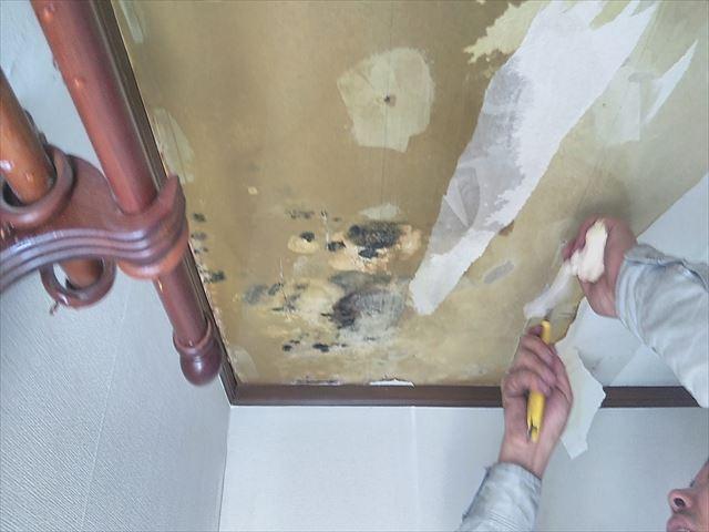 姫路市の雨漏り箇所の確認