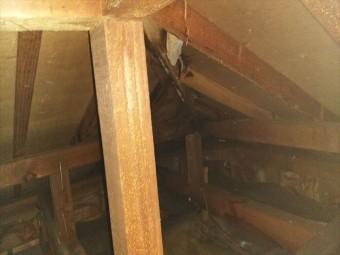 姫路市香寺町の小屋裏の雨漏り跡の写真