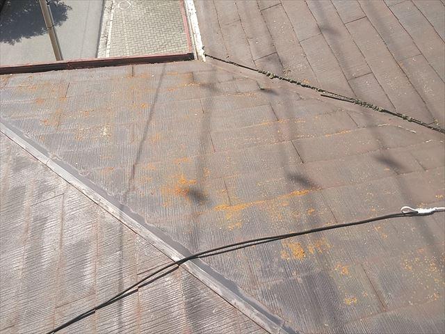 加古川市の苔が生えた屋根