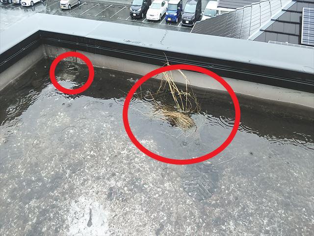 加古郡播磨町の陸屋根のドレン詰まりの原因