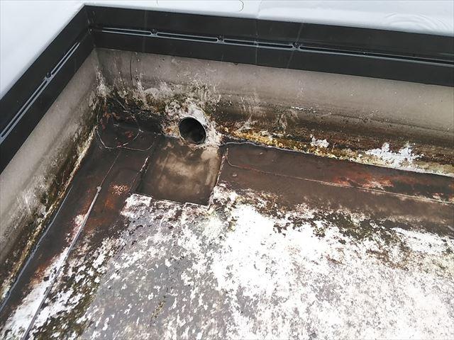 加古郡播磨町の陸屋根の水が抜けたドレンの写真