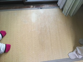 加古川市の雨漏りでの畳の雨染み