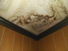 雨漏りによってできた天井の染み