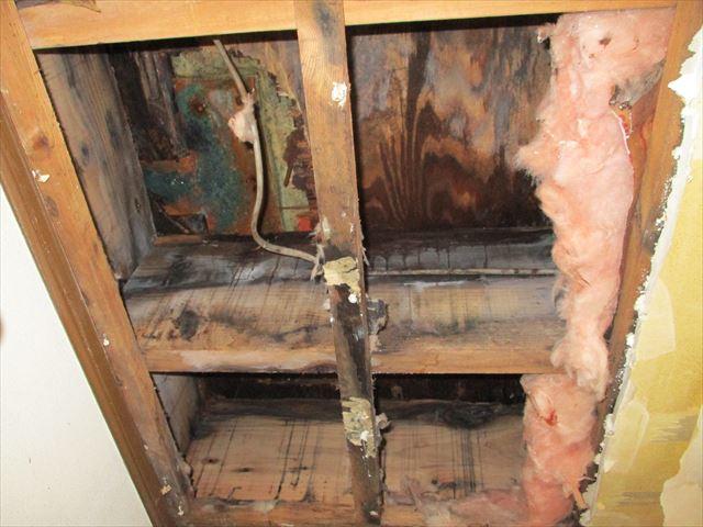 雨漏りによってカビ・腐食が進んだ天井内部