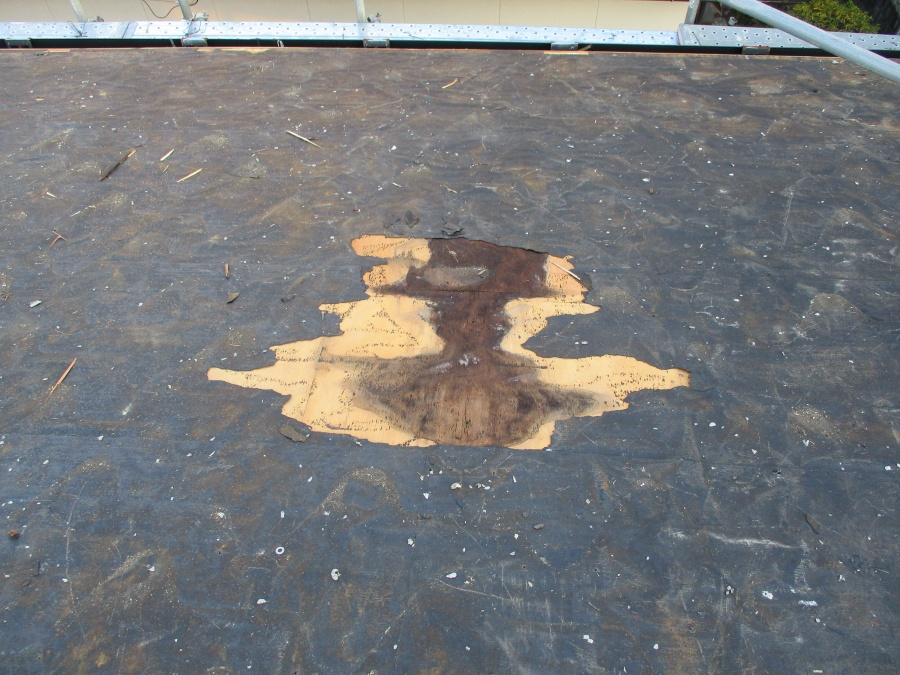 姫路市屋根葺き替え太陽光レール後の下地浸水