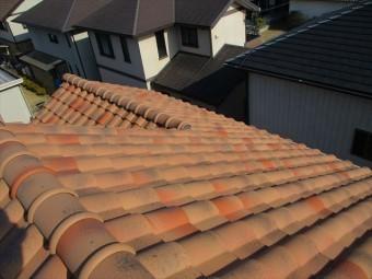 姫路市の調査中の大屋根の写真