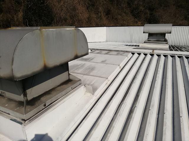 姫路市の雨漏り調査の折板屋根のルーフファン