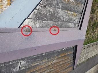 姫路市の無料点検のスレート屋根の釘浮きの状況