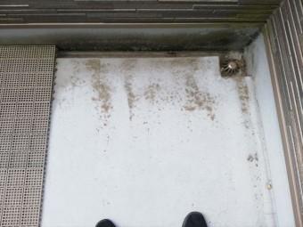 姫路市のFRP防水の劣化