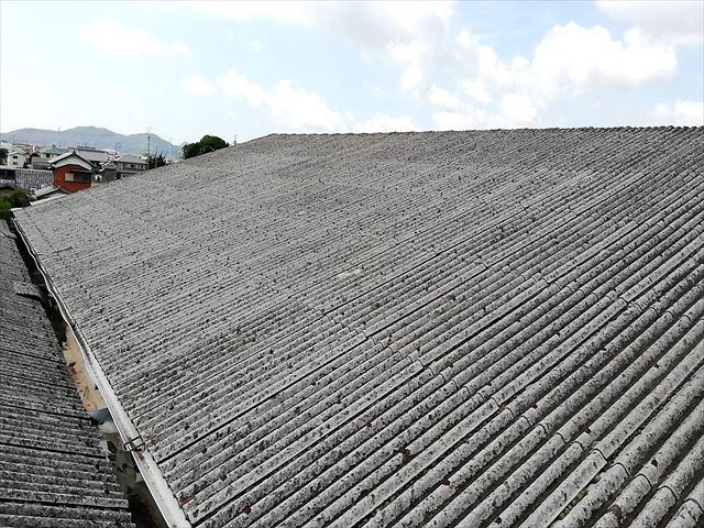 太子町の雨漏りした工場のスレート屋根
