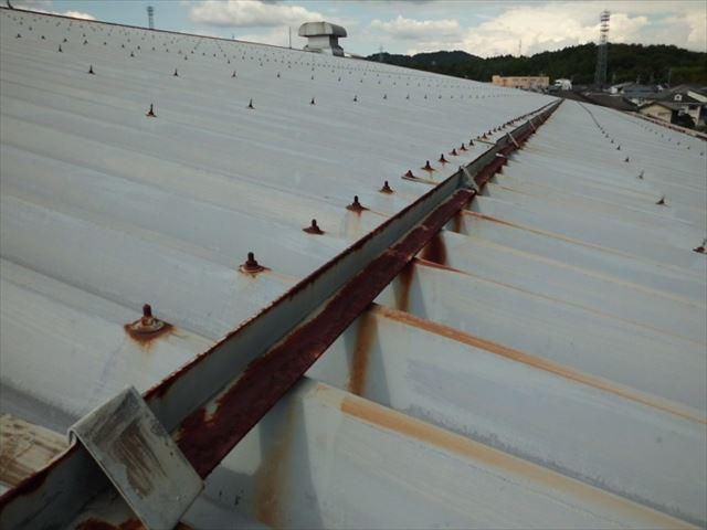 折板屋根の錆びたボルト